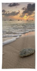Beach Towel featuring the photograph Grand Cayman Beach Coral At Sunset by Adam Romanowicz