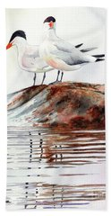 Grand Traverse Terns Beach Sheet