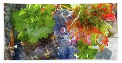 Grapes On The Vine In The Autumn Season Beach Sheet