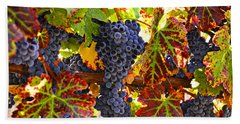 Grapes On Vine In Vineyards Beach Sheet by Garry Gay