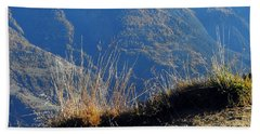 Grass In The Foreground, The Main Valley Of The Swiss Canton Of Valais In The Background Beach Towel