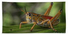 Grasshopper And Palm Frond Beach Towel