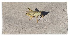 Grasshopper Curiosity Beach Towel