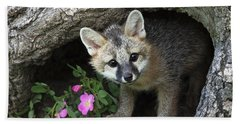 Gray Fox Kit Beach Towel