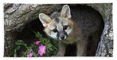 Gray Fox Kit Beach Sheet