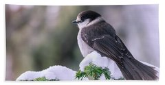 Gray Jay Beach Sheet