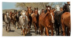 Beach Towel featuring the photograph Great American Horse Drive by Brenda Jacobs