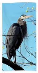 Beach Towel featuring the photograph Great Blue Heron 001 by Chris Mercer