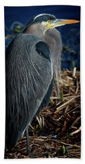 Beach Sheet featuring the photograph Great Blue Heron 2 by Randy Hall