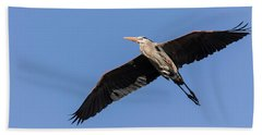 Great Blue Heron 2017-6 Beach Sheet by Thomas Young