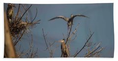 Great Blue Heron - 3 Beach Sheet by David Bearden