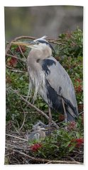 Great Blue Heron And Nestling Beach Towel