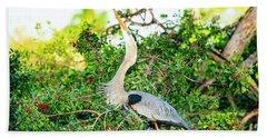 Great Blue Heron At Rookery Beach Sheet