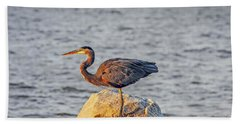 Great Blue Heron At Sunset Beach Towel
