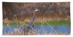 Beach Towel featuring the photograph Great Blue Heron By The River by Sharon Talson