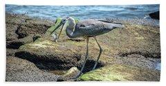 Great Blue Heron Catching A Blue Crab On Chesapeake Bay Beach Towel