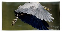 Great Blue Heron Flying With Fish Beach Sheet