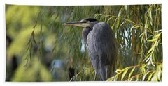 Great Blue Heron In A Willow Tree Beach Towel by Keith Boone