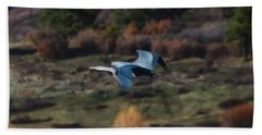 Great Blue Heron In Flight II Beach Towel