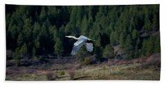 Great Blue Heron In Flight Beach Sheet