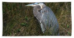 Great Blue Heron In The Grass Beach Towel