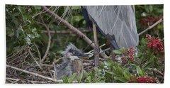 Great Blue Heron Nestling Beach Sheet