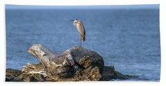 Great Blue Heron On Chesapeake Bay Beach Towel