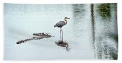 Great Blue Heron On Chesapeake Bay Pond Beach Towel