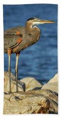 Great Blue Heron On Rock Beach Towel