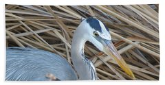 Great Blue Heron On Spi Beach Towel