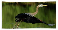 Beach Towel featuring the photograph Great Blue Heron - Over Green Waters by Sue Harper