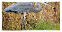 Great Blue Heron Struggling With Lunch Beach Towel by Ricky L Jones