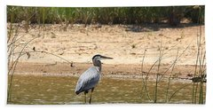 Beach Towel featuring the photograph Great Blue Heron Wading by Sheila Brown