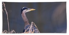 Beach Towel featuring the photograph Great Blue Heron Waiting by Sharon Talson