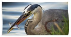 Great Blue Heron With Fish Beach Sheet