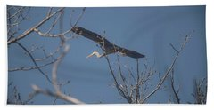 Beach Towel featuring the photograph Great Blue In Flight by David Bearden