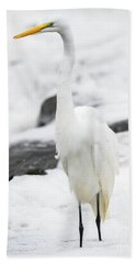 Beach Towel featuring the photograph Great Egret In All White  by Ricky L Jones