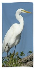 Great Egret Profile Beach Sheet