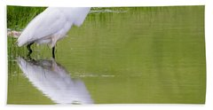 Beach Towel featuring the photograph Great Egret Ready To Pounce by Ricky L Jones