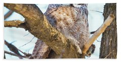 Great Gray Owl Beach Sheet by Ricky L Jones