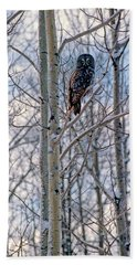 Great Grey Owl Beach Sheet