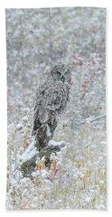 Great Grey Owl In Snow Beach Towel