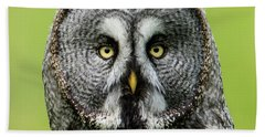 Great Grey's Portrait Closeup Square Beach Towel