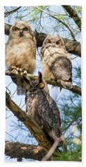 Great Horned Owl Family Beach Towel