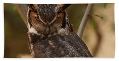 Beach Towel featuring the photograph Great Horned Owl In A Tree 2 by Chris Flees