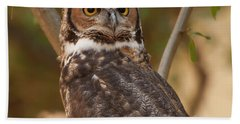 Beach Towel featuring the photograph Great Horned Owl In A Tree 3 by Chris Flees
