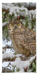 Great Horned Owl In Snow Beach Towel by Jack Bell