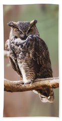 Great Horned Owl Perched On Branch Beach Towel
