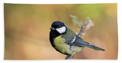 Great Tit - Parus Major Beach Sheet