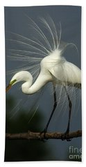 Majestic Great White Egret High Island Texas Beach Towel by Bob Christopher